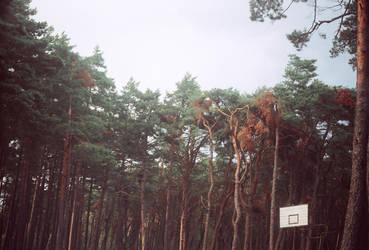 basketballcountry by aiemydyjat