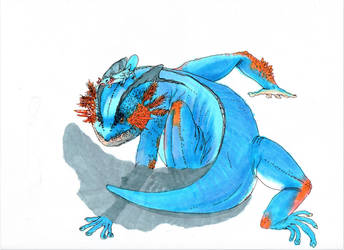Swampert by Acousticletters