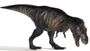Tyrannosaurus 02 by 2ndecho