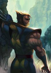 Wolverine by PnzrK