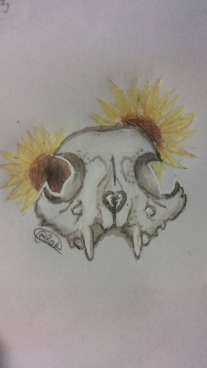 Skulls 'n Flowers by RandomArtKid