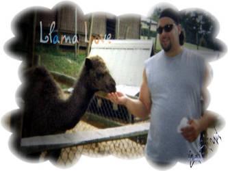 Llama Love by Compusician