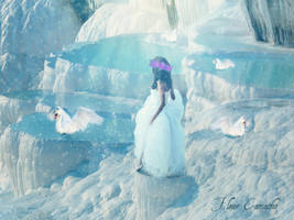 Queen of the Swans by FleurCamacho