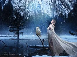 Echos of Winter by FleurCamacho