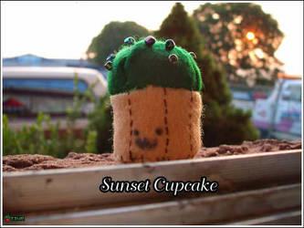 A cupcake at sunset by sailortina