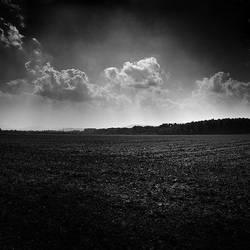 The Fields by tom2strobl