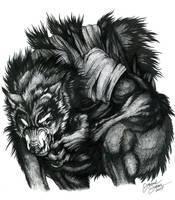 True Identity... by Emryswolf
