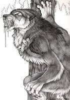 Night Wolf by Emryswolf