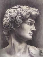 Face Of David by Rafik Emil H by rafikemil