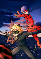 Miraculous Ladybug and Chat Noir by Kiwa007
