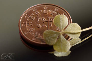 4-leaf clover and 5 cents coin by debahi