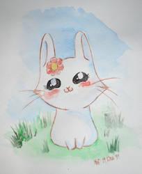 bunny :3 by melodysurbanjungle