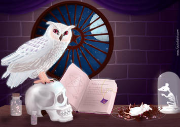 WitchCraft by PaulaEdith