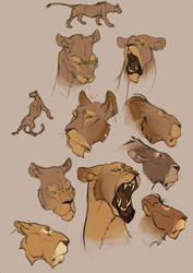 lion heads by CoconutMilkyway