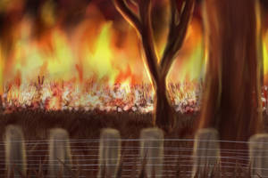 Flaming Cotton Fields by OpaIescent