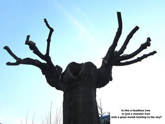 Headless Tree by Girdamin