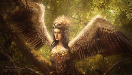 Bird of Prey by PetyaPlamenova