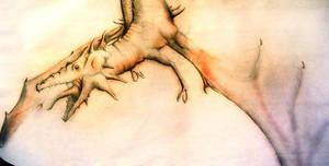 Dragon by OscarJohansson