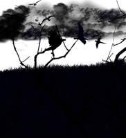 Blue Bird by Anubis187