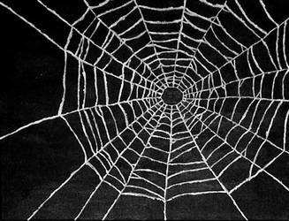 spider web by bodesta