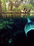 Raven in the Springs by MerBellas