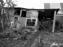 Sherbinka shed by inok