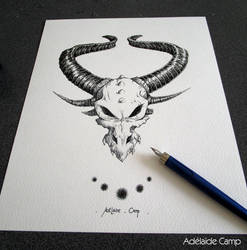 Dragon skull by Adelaide-Camp
