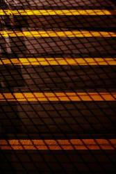 The Orange Stripes by cheduardo2k