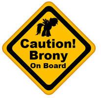 Caution, Brony on Board by RDbrony16