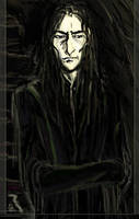 Snape -The Guardian Updated by Vizen