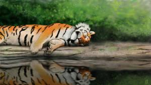 Sleeping Tiger by Matou31