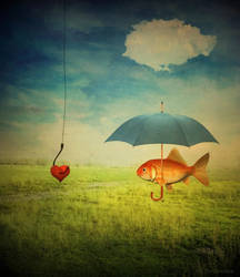 fishy love by monika-es