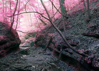 Starved Rock in infrared by vi0letdreamer