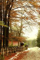 Street of Seasons. by incredi