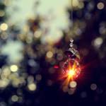 When wishes come true. by incredi