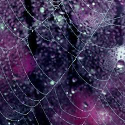 Midnight sonata by incredi