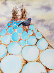 Bowerbird by nikismindriot