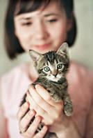 Kitty by KseniaLevi