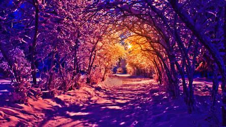 Winter Walk WM by Richard67915