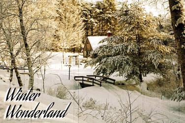 Vintage Winter Wonderland by Richard67915
