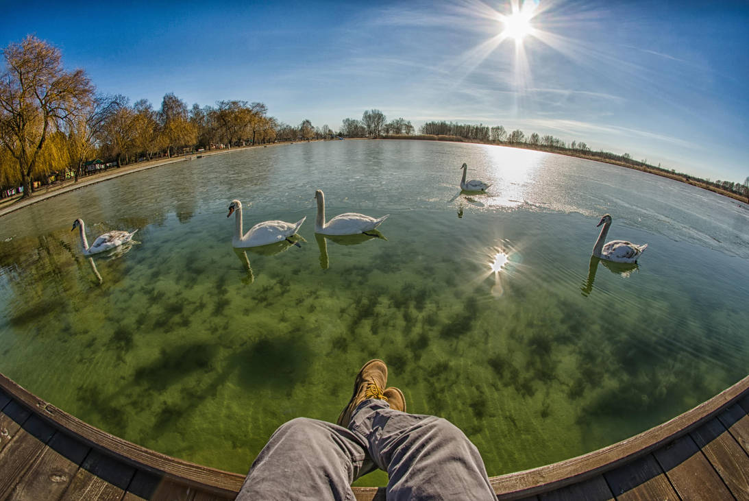 Sunbathing with my friends. by adamcroh