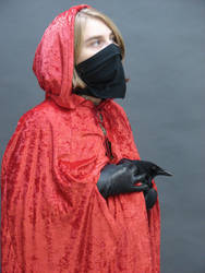 Hooded figure with crow-raven2 by InKi-Stock