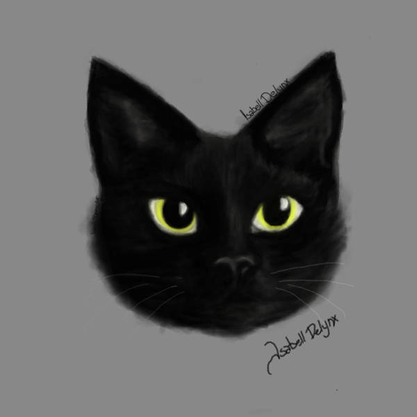 IsabellDelynx Black Cat by IsabelldeLynx