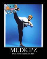Chuck Norris Motivational by XxMURPLExX