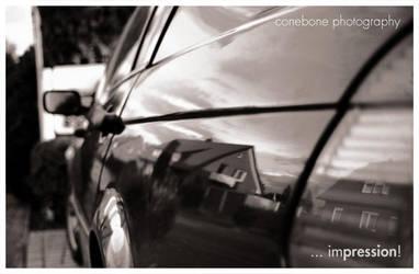 ...impression by ConeBone