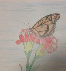Butterfly upon Carnations  by DarkFate1342