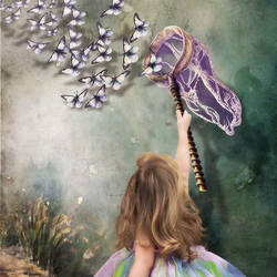 Butterfly Catcher by tarty00