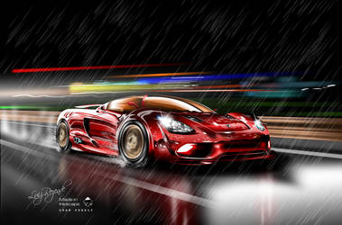Speed in the rain by luizrezende