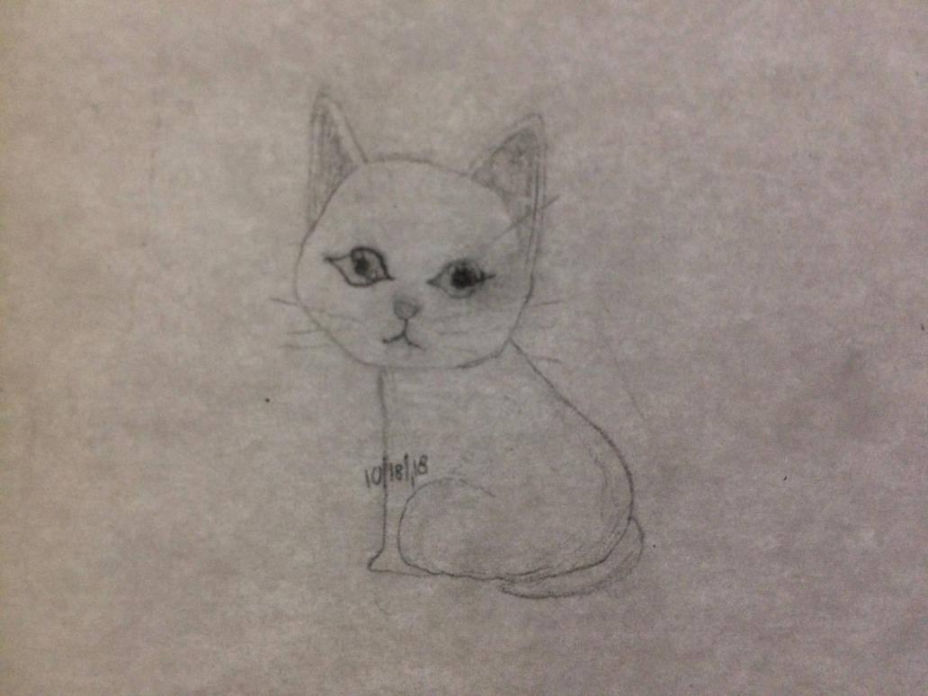 Milk - Pencil Drawing Of Semi-Realistic Kitten by robskind