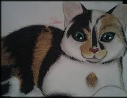 Meow by OokamiKuna